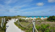 The path to paradise! Come to Tween Waters Inn in Captiva for the best family beach vacations. Best Family Beaches, Paddle Board Yoga, Kayak Tours, Captiva Island, Beach Vacations, Paddle Boarding, Dog Friends, Tween, Kayaking