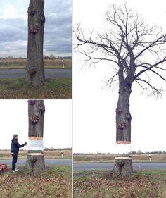 Дерево висящее в воздухе - потрясающая иллюзия Даниэля Сиеринга