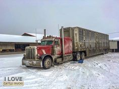 "Thanks and all credits to Nathan Stahl... ""I work for vernla livestock, so we're outta southern Ontario.  I mainly run to PA, Midwest and Texas sometimes. Occasionally I'll do local sometimes and run to Quebec too."" 02-14-2016"