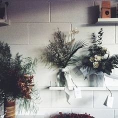 Winter whites ❄️ Winter Flower Arrangements, Winter Flowers, Winter White, House Plants, Greenery, Beautiful Homes, Living Spaces, Photo And Video, Instagram