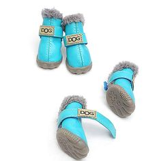 75c9413dae2ac 15 Best Beautiful Dog Shoes images in 2015   Beautiful dogs, Cute ...