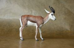 Springbok male antelope - made by Harriet Knibbs Sculptures Ltd