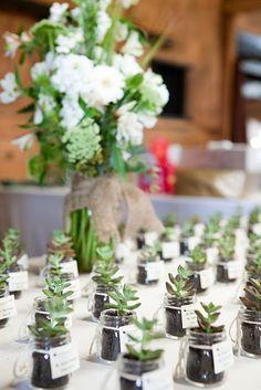 Virginia Burlap Babys Breath Wedding Succulent Favor Escort Cards 275x412 Libby + Joshuas Beautiful and Natural Outdoor Vineyard Wedding in Virginia