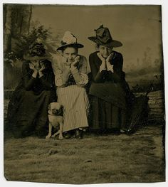 Witch Hats and a Dozing Pug by Wonderfully Strange