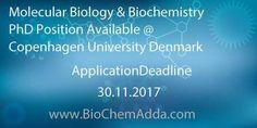 Molecular Biology & Biochemistry PhD Position Available @ Copenhagen University Denmark