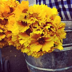 bright yellow flowers at the farmers market