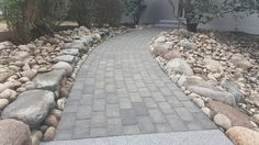 Harborshore Landscaping updated this walkway with beautiful Cambridge Pavingstones with ArmorTec.