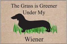 LMFAO  The Grass is Greener Under My Wiener Doormat by High Cotton, http://www.amazon.com/dp/B005MYHXAY/ref=cm_sw_r_pi_dp_E0UDrb1SP45W7