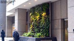 Florafelt Vertical Garden Planters And Living Wall Systems