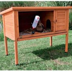 this size hutch is suitable for mini lops and dwarf rabbits.
