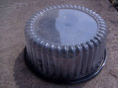 A grocery store cake container used as a mini-greenhouse for seed starting. via Instructables