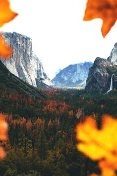 https://500px.com/photo/182053179/fall-colors-in-yosemite-by-oscar-nilsson?ctx_page=1&from=user&user_id=15196945