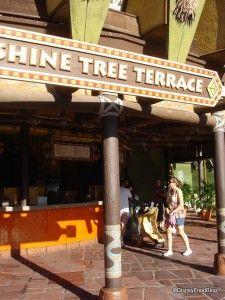 Sunshine Tree Terrace | the disney food blog