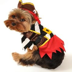Rustic Pirate Dog Costume available at http://doggyinwonderland.com/item_1199/Rustic-Pirate-Dog-Costume.htm