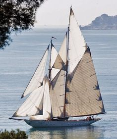 Sailing a Schooner Classic Sailing, Classic Yachts, Yacht Boat, Tug Boats, Sail Away, Wooden Boats, Tall Ships, Boats For Sale, Boat Building