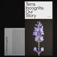 Terra Incognita, new brand, new identity #semiotikdesign