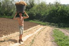 Travel the world and discover rural reality with wwoof | Thinking Nomads