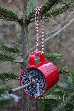 Winter Bird Food for Outdoors. Looks like this would be better than the mess that loose seed birdfeeders make. The seeds just end up all over the ground! Bird Suet, Diy Bird Feeder, Bird Seed Wreath Recipe, Bird Seed Ornaments, Bird Identification, Bazaar Ideas, Bird Food, Art And Craft, New Crafts