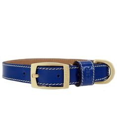 Cobalt Blue | PRÊT À PORTER Designer Dog Collars, Pret, Natural Tan, Leather Collar, Matte Gold, Classic Looks, Cobalt Blue, Accessories, Fashion