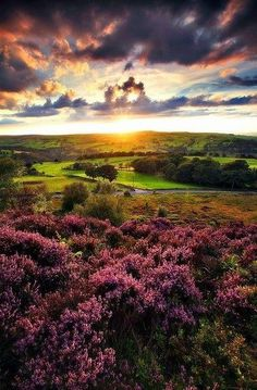 Beautiful landscape from the Sun Sea and Mountains -  Norland Moor at Sunset - Halifax- England #LandscapeSea