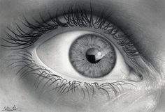 Wide eye – Note how the highlights make the drawing more realistic putting the reflection into the eye.  - Eyes are the windows to the soul. There's no person in the world who doesn't know this common wisdom, which is actually quite true. Eyes are the most expressive part of the human face, they reveal our feelings and our state of spirit. If we tell lies, eyes can reveal the truth, if we feel happy, eyes start to glow. Besides the myriad of idioms, poems, songs dedicated to the beautiful…