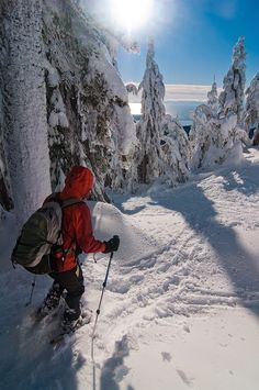 7 Reasons To Try Snowshoeing This Winter - http://www.extrahyperactive.com/2012/11/7-reasons-to-try-snowshoeing-this-winter.html