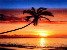 USA-Hawaii Atardecer