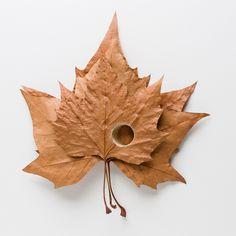 Crocheted Leaf Sculptures Susanna Bauer 20