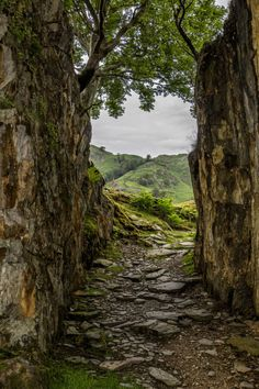Wander the wood View from Tilberthwaite quarry, Lake Listrict, England by alastairgraham19