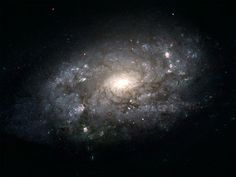 Galaxy Grande: Milky Way May Be More Massive Than Thought   http://www.scientificamerican.com/article.cfm?id=galaxy-grande-milky-way-milky-way-may-be-more-massive-than-thought