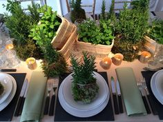 Aromaticas Decoration, Table Settings, Patio, French, Garden, Outdoor Decor, Flowers, Open House, Comfort Colors