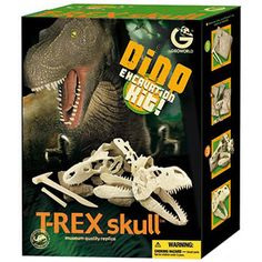 GeoWorld Dino Excavation Kit, T-Rex Skull