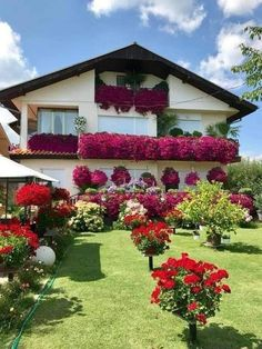 Hillside Landscaping, Country Landscaping, Front Yard Landscaping, Amazing Gardens, Beautiful Gardens, Balcony Flowers, Outdoor Steps, Front Yard Design, Outdoor Restaurant