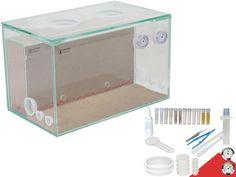 Ants Starter Kit XL - 25x15 - combi - center                              …