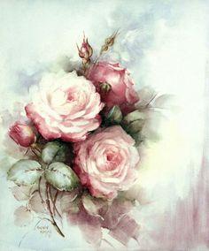 Sonie Ames rose