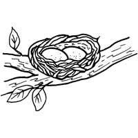 nests coloring pages - photo#24
