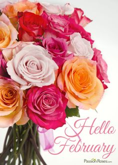 Hello February! Seasons Months, Days And Months, Months In A Year, Four Seasons, Hello February Quotes, February Baby, December, Year Quotes, New Month