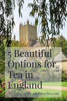 Five recommendations for beautiful places to have tea in England, including Wells Cathedral. Locations in Surrey, Somerset, Stratford-upon-Avon and Norfolk. Travel Destinations, Travel Tips, Stratford Upon Avon, Somerset, Surrey, Norfolk, Shakespeare, Wells, Britain