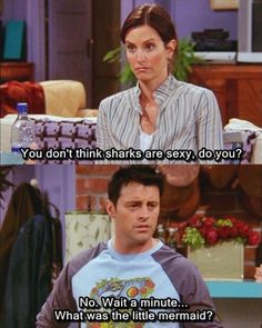 """Monica: """"You don't think sharks are sexy, do you?"""" Joey: """"No. Wait a minute...what was the little mermaid?"""""""