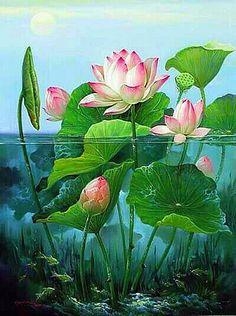 Water lily - my sons birth month flower Deco Floral, Motif Floral, Botanical Art, Botanical Illustration, Lotus Painting, Painting Flowers, Lotus Art, Art Asiatique, Art Japonais