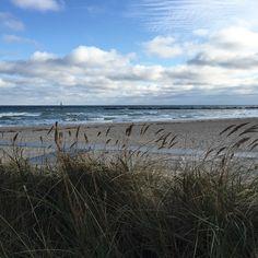 Spaziergang am Meer im November  Baltic sea in November
