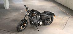 Harley-Davidson® 2017 Roadster® for sale