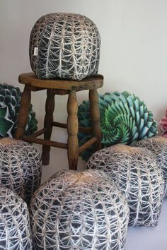 Barrel Cactus pillow made to order by Plantillo on Etsy