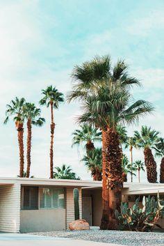 wanderlust | travel - Palm Springs, CA