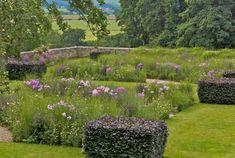 Blocks of copper beech in this informal garden with meadow flowers & grasses | Arne Maynard