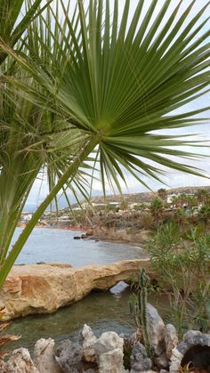Star Beach, Chersonissos, Crete, Greece