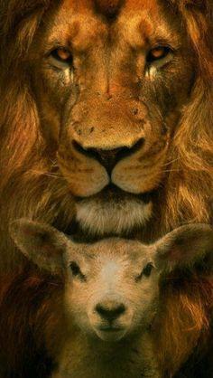 The Lion and the Lamb...  Digno de Adoração, Cordeiro e o Leão