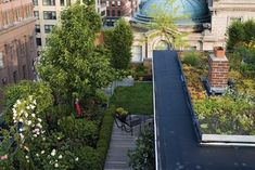 Manhattan-based designers Chris and Lisa Goode of Goode Green are pioneers in the green roof movement in New York.