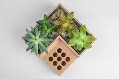 A Flower Pot with an Integrated Pen Holder #productDesign #industrialDesign