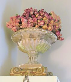Pink roses in urn